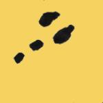 traces-p